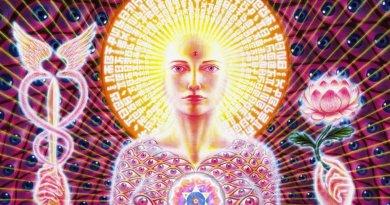 Évolution personnelle, L'Art de l'Ascension : Les 7 étapes de l'Alchimie Ascensionnelle