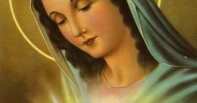 Message de Marie: ils ont perdu la notion de raisonnement… Canalisation Georges Boned