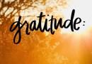 Selim Aissel : La gratitude