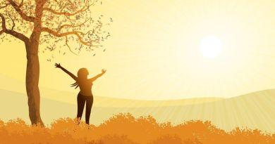 Le système expérienciel que nous créons nous permet de nous révéler à notre véritable nature, en fonction de nos choix et de ce nous reconnaissons en nous