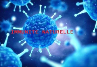 Une étude révèle que de nombreux adultes non infectés disposent d'une forte protection d'anticorps préexistants contre le COVID