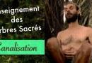 Enseignement des Arbres Sacrés Ancestraux- Canalisation