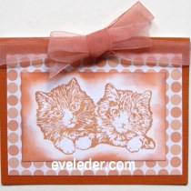 Two Kitten Card