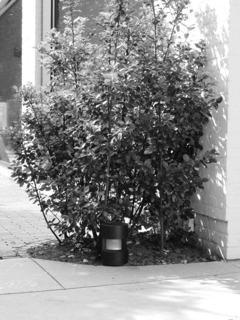 speelse_tuin_tuinarchitect_geel3