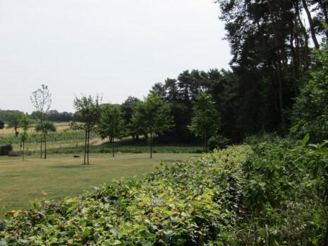 Tuinarchitect_geel_voorbeeld_speelse_tuin10