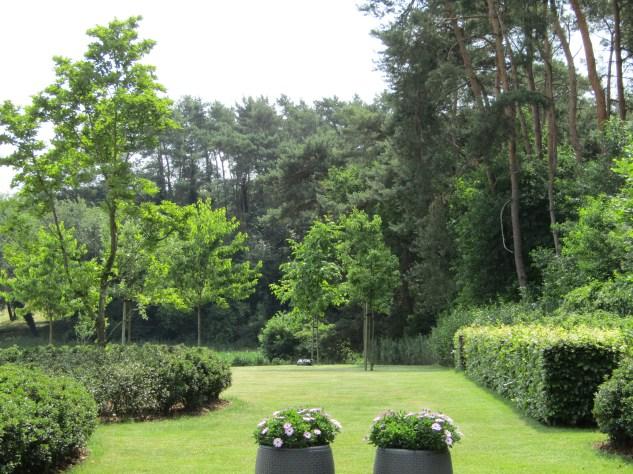 Tuinarchitect_geel_voorbeeld_speelse_tuin11
