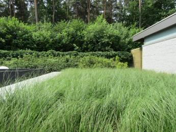 Tuinarchitect_geel_voorbeeld_speelse_tuin13