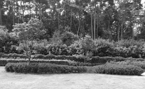 Tuinarchitect_geel_voorbeeld_speelse_tuin3