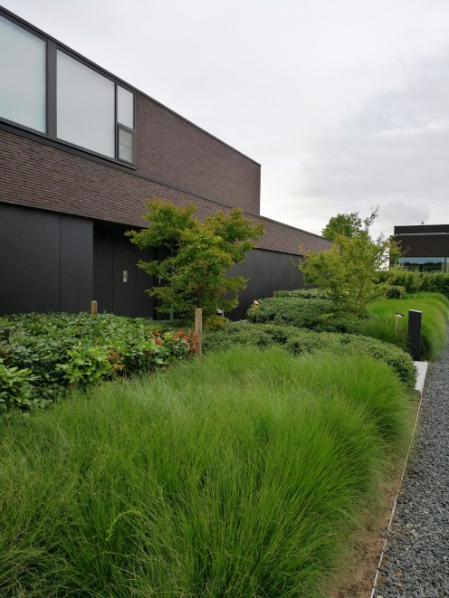 grassen strakke tuin Evelien Claus tuinarchitect
