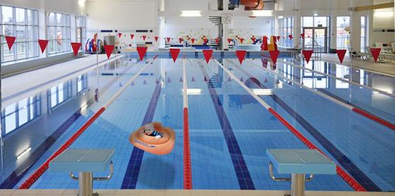 in-olympic-pool