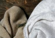California Alligator Lizard (in my sweaters box) Newcastle, California © Eve Bernhard. June, 2013