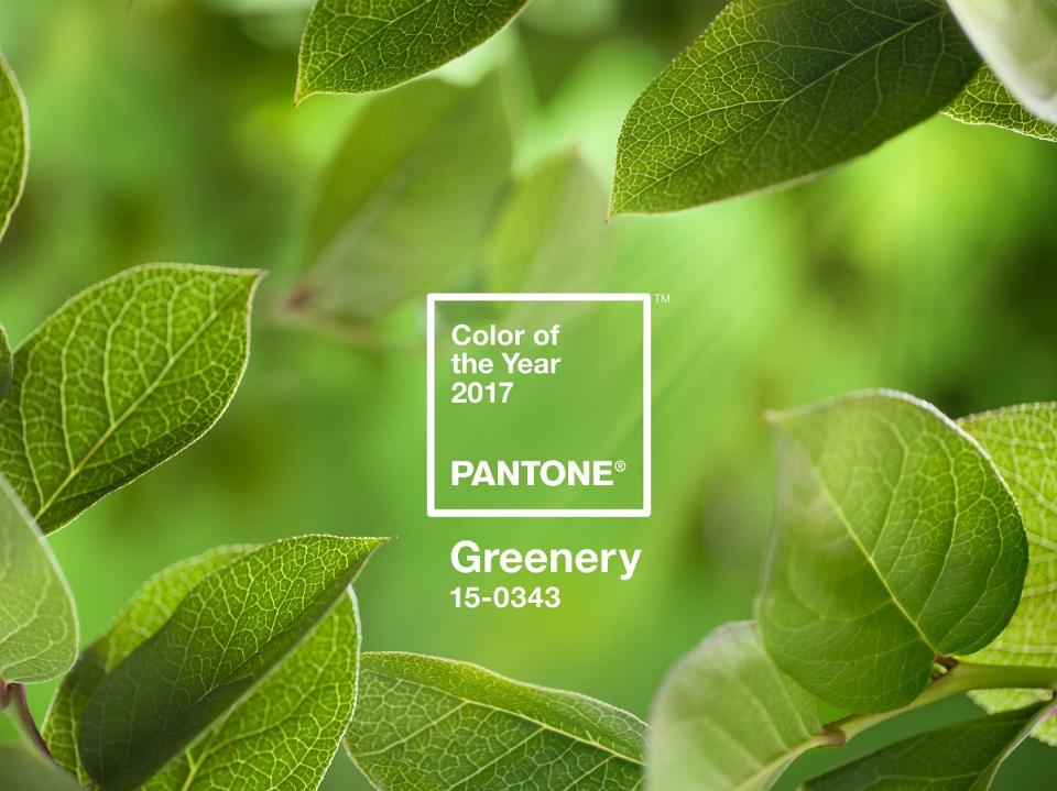 Pantone's colour of the year may the reason that botanical interiors are still going strong. Greenery is a fresh and zesty yellow-green shade that evokes the first days of spring when nature's greens revive, restore and renew. Illustrative of flourishing foliage and the lushness of the great outdoors, the fortifying attributes of Greenery signals consumers to take a deep breath, oxygenate and reinvigorate.