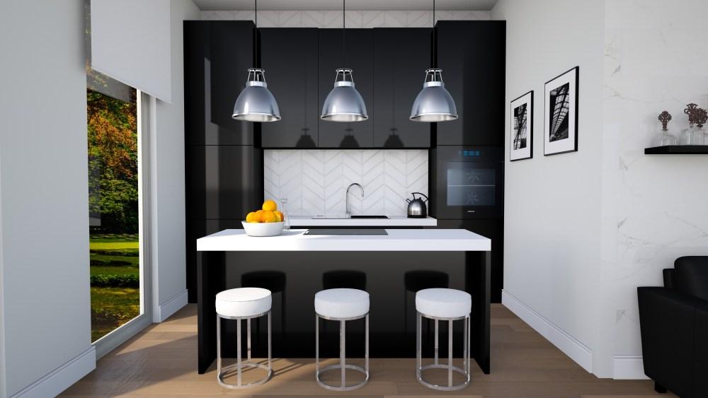rooms_25392786_sleek-black-kitchen-kitchen.jpeg