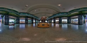 museum-of-natural-history-1