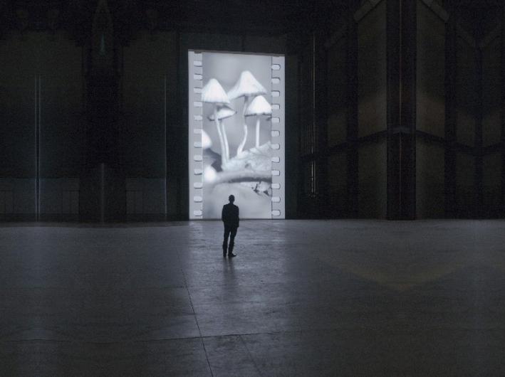 Museos, Objetos e Iluminación