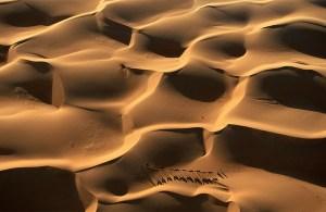 caravana-dromedarios-mauritania