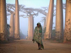 girl-baobabs-madagascar_53921_990x742