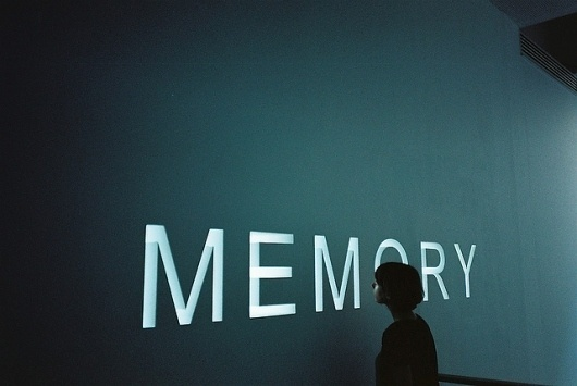 Conservación de la Memoria, Tradiciones y Formas de Vida