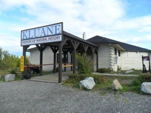 kluane-museum-of-natural