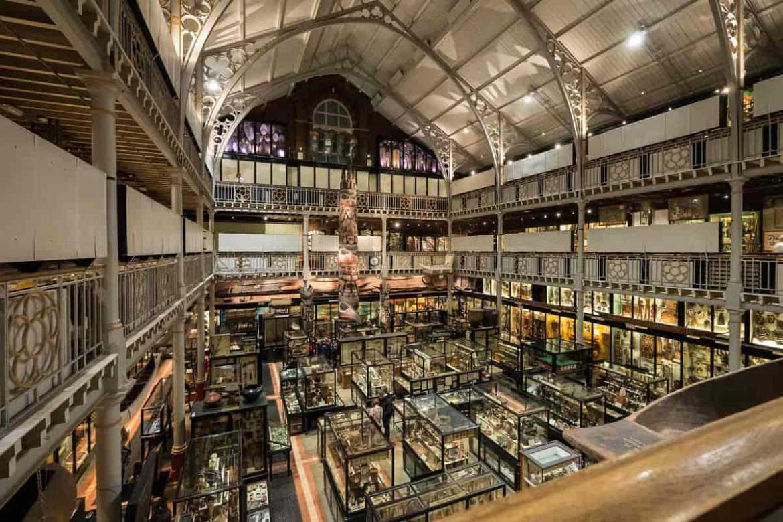 Museos, Innovación y Economía de la Elección