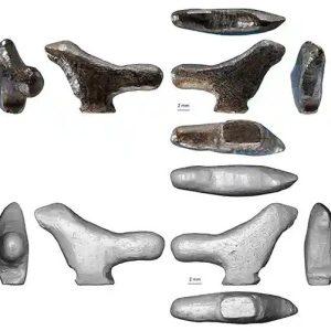 Cea mai veche sculptură din Asia. Pasăre din os de acum 13.500 de ani a fost găsită în China