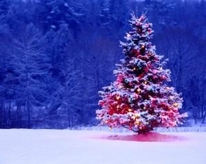 animated-christmas-wallpapers-free-outdoor-christmas-tree