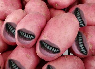 gm-potatoes