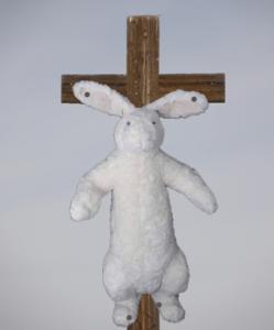 cross bunny