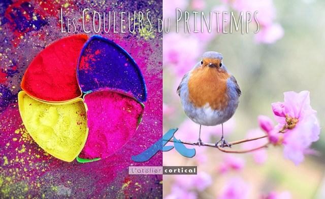 evenement printemps couleurs