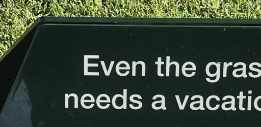 Even the grass needs a vacation
