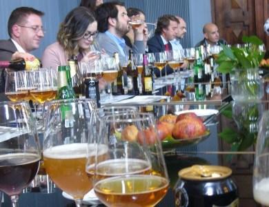 Cata de Cervezas en el Palacio de Cibeles _portada_