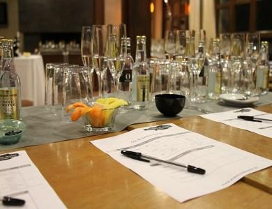 Cata Taller de Gin tonics en Toledo