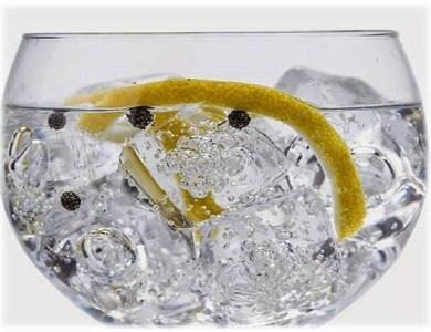 Taller de gin tonics virtual por Eventos de Autor