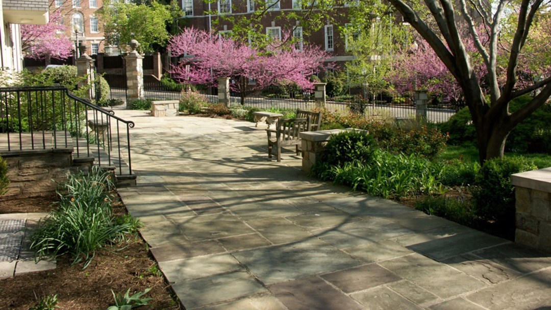 a flagstone terrace surrounded by manicured gardens, with redbud trees in the background