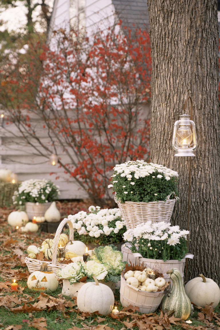 Exquisite Outdoor Halloween Decoration Ideas - Festival ... on Lawn Decorating Ideas  id=22513