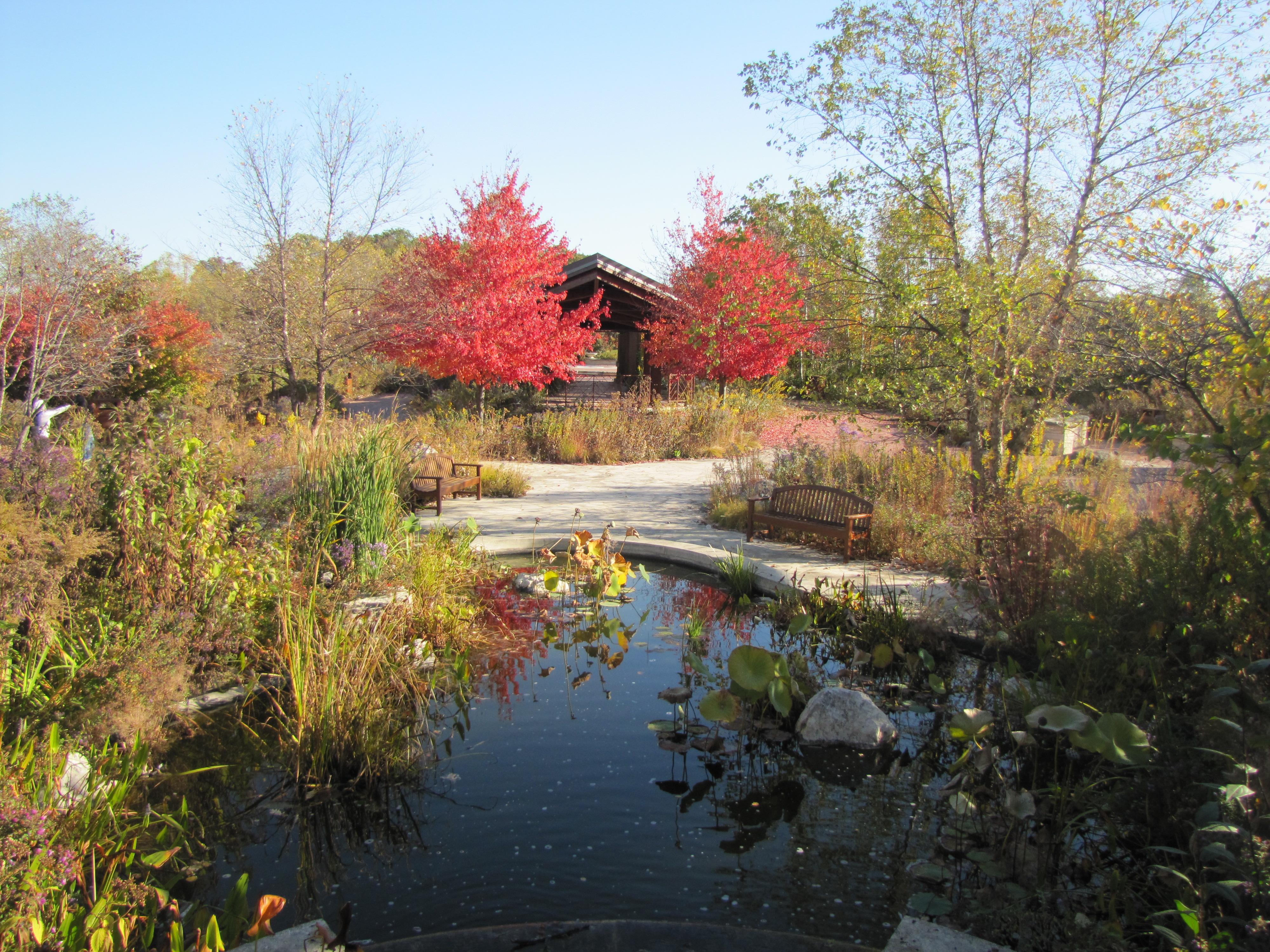 Native Gardens Autumn