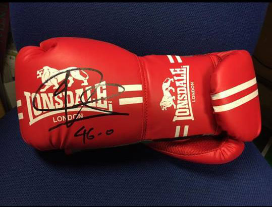 Signed Joe Calzaghe Boxing Gloves Charity Auction