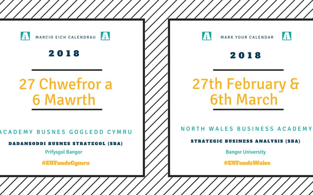 NWBA | SBA Feb/March 18 | Bangor University | Strategic Business Analysis | Training and Mentoring