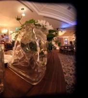 Glass Horses Head