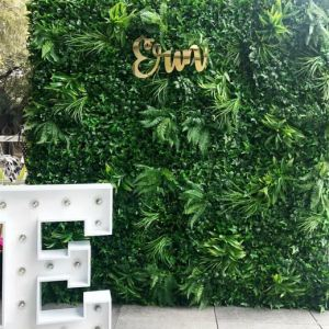 Faux Foliage / Tropical Wall Hire