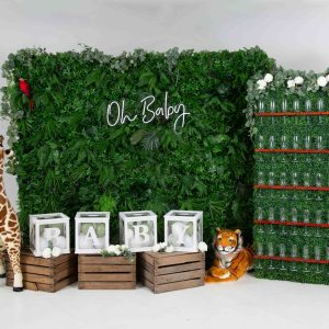 Safari Theme Baby Shower / Gender Reveal Package