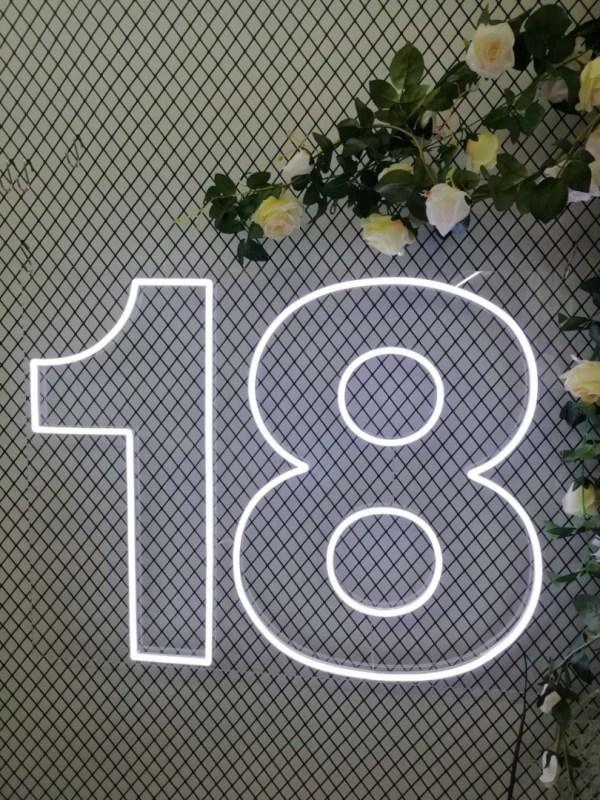 18th Birthday Neon Sign