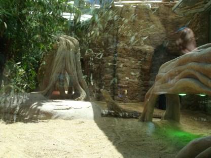 Varanernes anlæg - taget gennem en rude