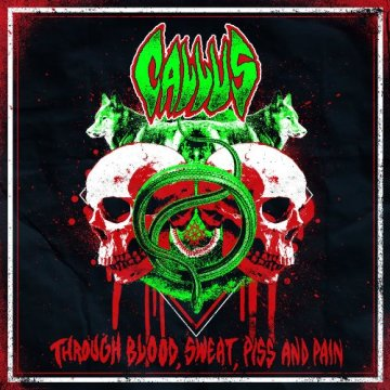 Through Blood, Sweat, Piss And Pain EP Cover