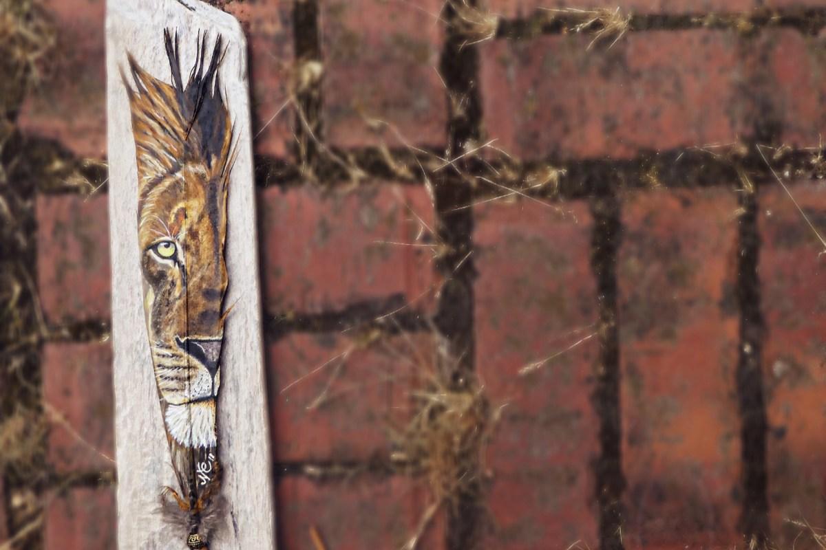 Löwenauge auf Feder - Löwe