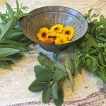 Harvesting Herbs and Small Acts