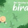 birbs – font
