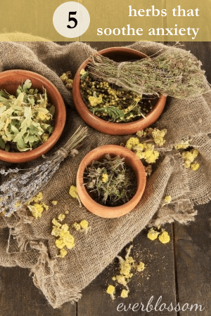 5 Herbs that Soothe Anxiety