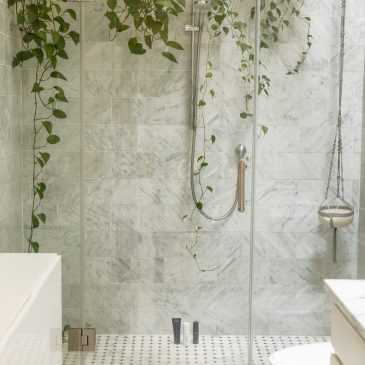 7 Hanging Plants that Thrive in a Bathroom and How to Hang Them