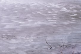 150316-142233_Plum Creek